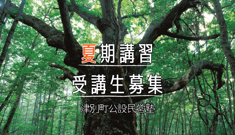津別町教育魅力化事業 公設民営塾 夏期講習会